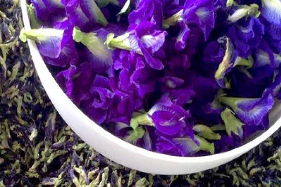The Butterfly Pea Flower Tea & the bartender's challenge!